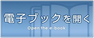ebook-btn